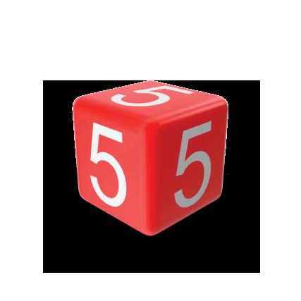 5 Reasons dice