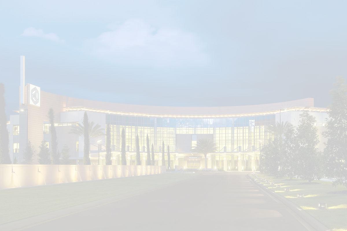 Wesley Chapel Hospital