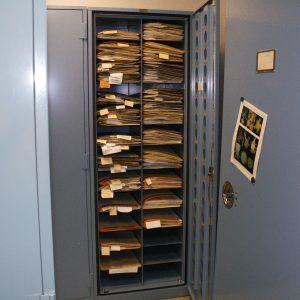 Botany storage solutions