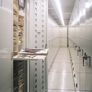 Botany museum storage solutions