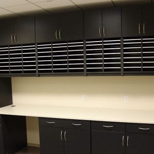 Adjustable shelving in a variety of colors