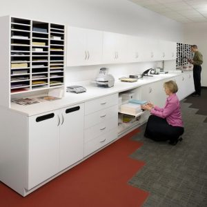 Adjustable shelving and Organizing Modules in office setting