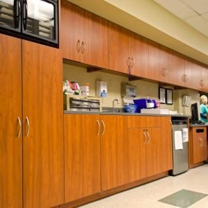 Laminate Cabinets provide organization in Healthcare