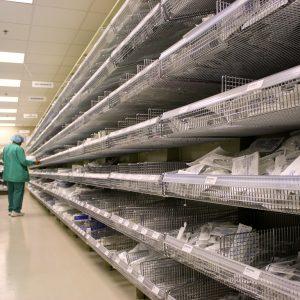 FrameWRX Shelving for Medical Supply Storage