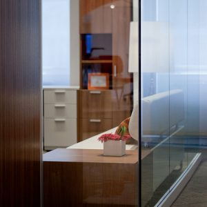 Genius and Lightline Walls in office setting