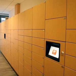 Electronic Parcel Lockers provide storage solutions