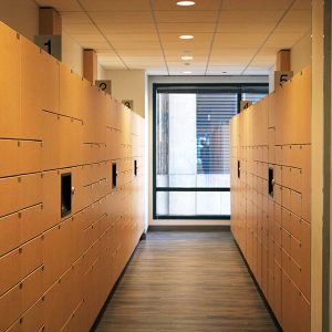 Smart Lockers for Secure Storage