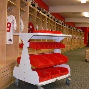 Bin shelving athletic equipment storage