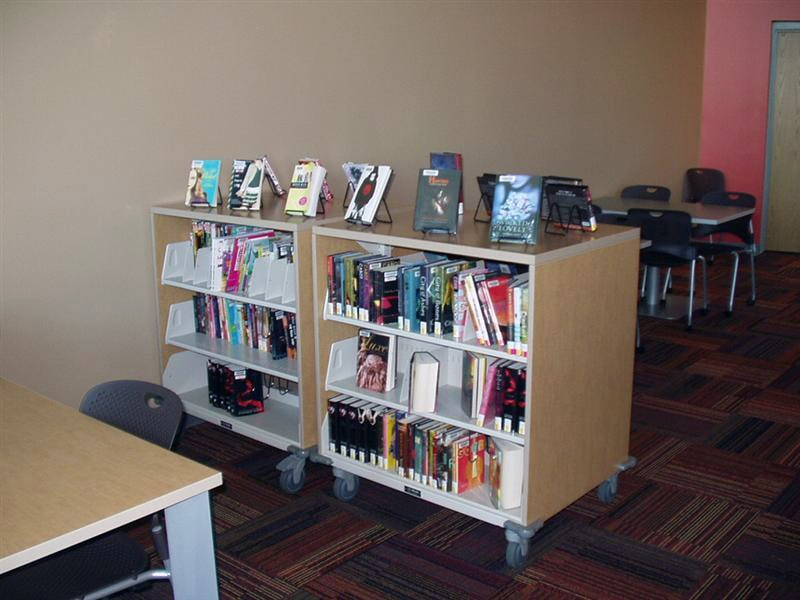 Cantilever shelves library book cases