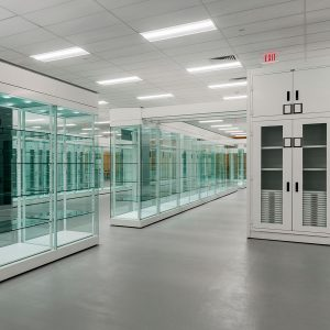 Museum cabinets with glass doors in art gallery