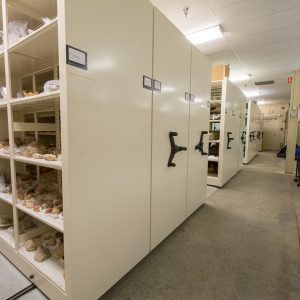 Artifacts for museum stored on compact shelving