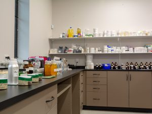 Shelving with cabinets work as integrated storage for labs