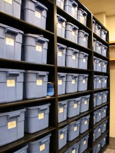 Bins are used to store and organize sports gear