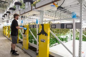 Mechanical Assist High-Density Shelving Stores Plants