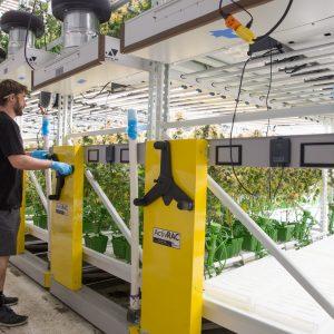 Mechanical Assist High-Density Shelving Stores Plants