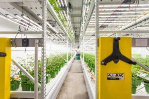 Indoor farming storage system