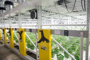 high-density storage for grow facility
