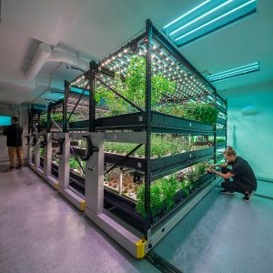 save-space-hydroponic-indoor-growing-urban-farm