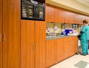 Laminate Modular Casework Cabinets for Healthcare