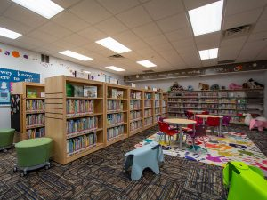 Modern Library with Wood Clad Library Shelving