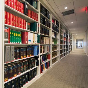 Small Business Storage Shelving for Corridor Storage